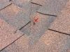 roof-nail-2